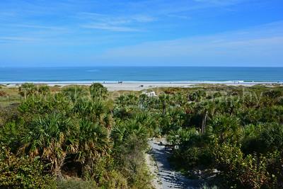Best of Florida