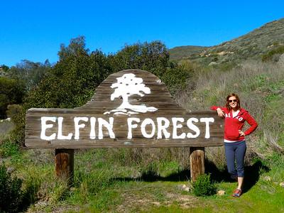 SAN DIEGO HIKES: Elfin Forest