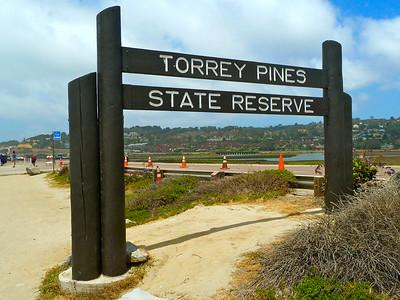 SAN DIEGO HIKES: Torrey Pines State Park