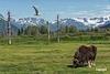 WildlifeSanctuary_D713709