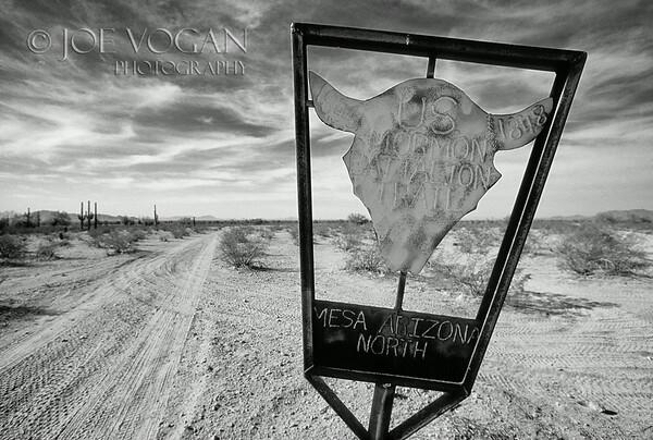 Sonoran Desert, Southern Arizona