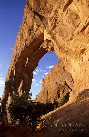 Pine Tree Arch, Devil's Garden, Arches National Park, Utah