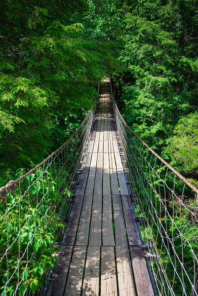 piney creek falls suspension bridge