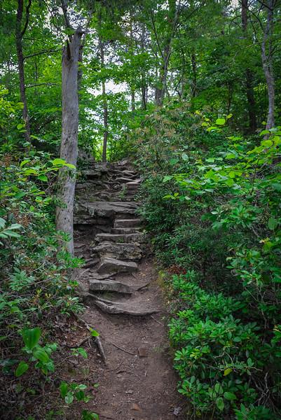 piney creek falls overlook trail