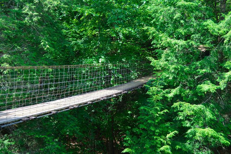 piney creek falls bridge