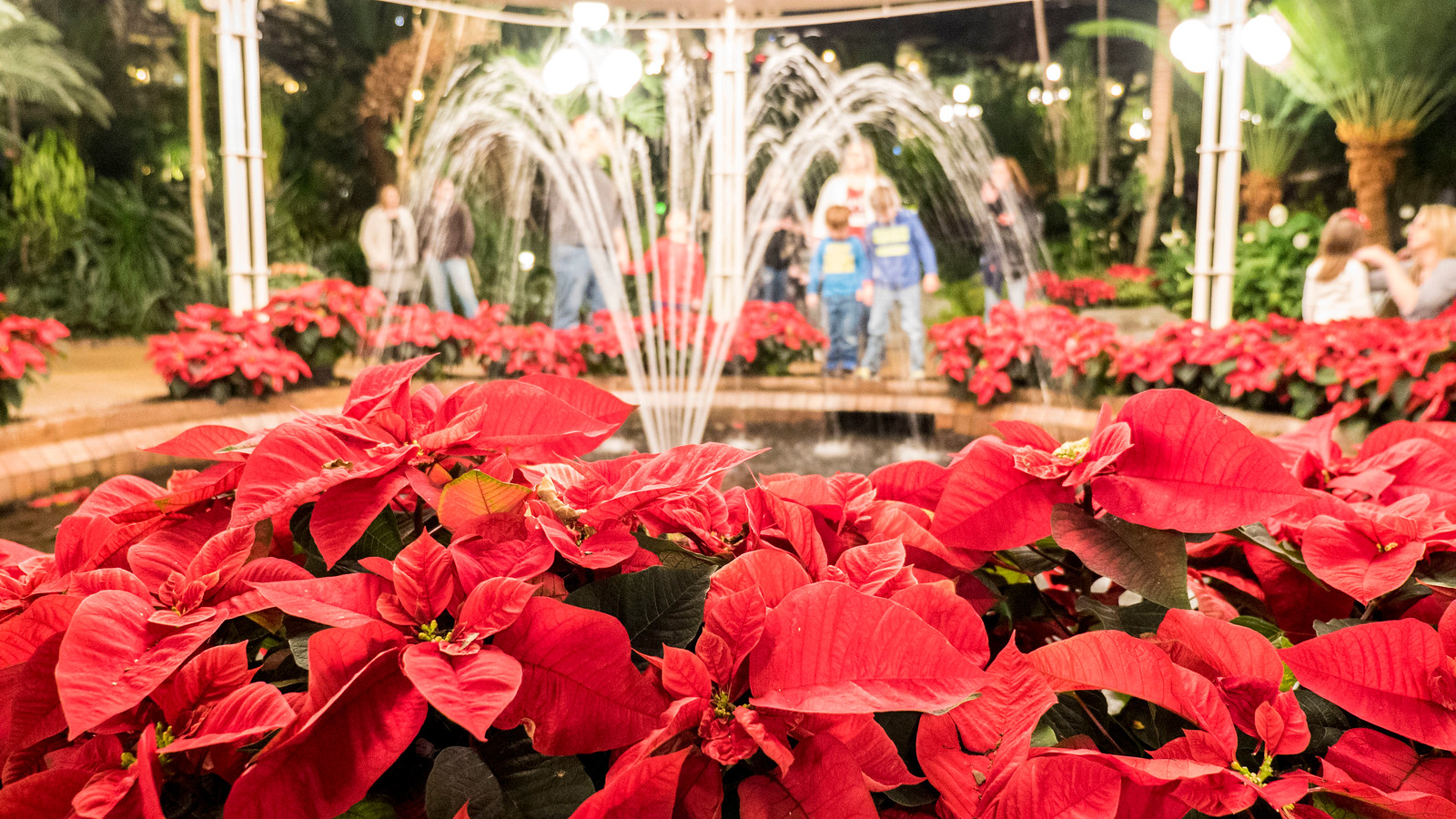 Christmas Events in Nashville: The Ultimate Guide to Festive Fun - Gaylord Opryland