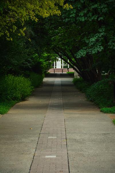 path of volunteers