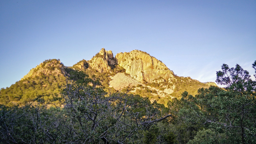 Emory Peak Big Bend