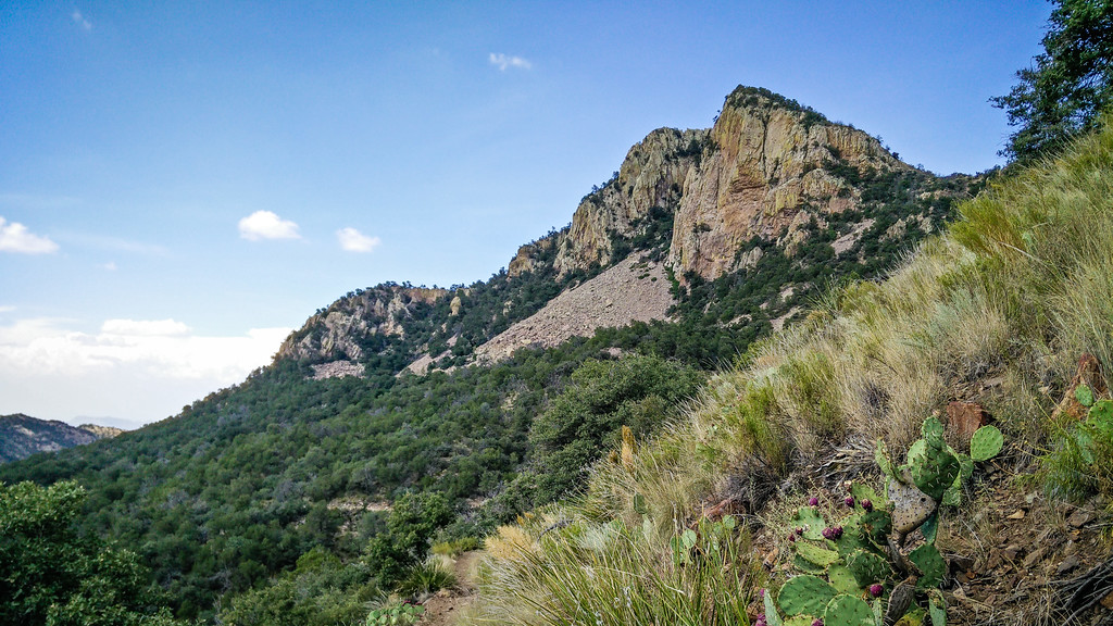 Emory Peak, Big Bend