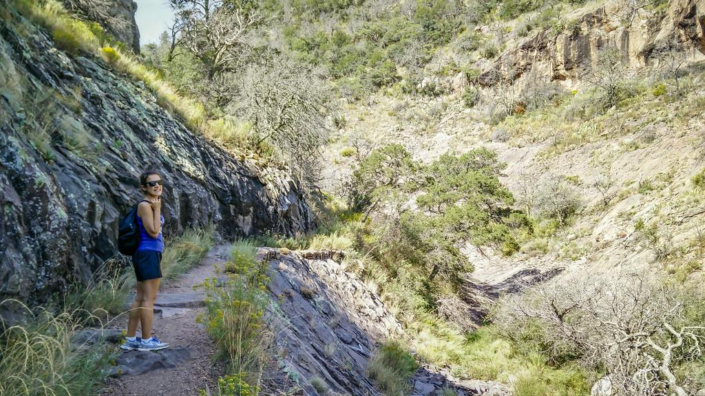 Sara Emory Peak Trail