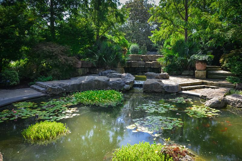 a woman's garden dallas