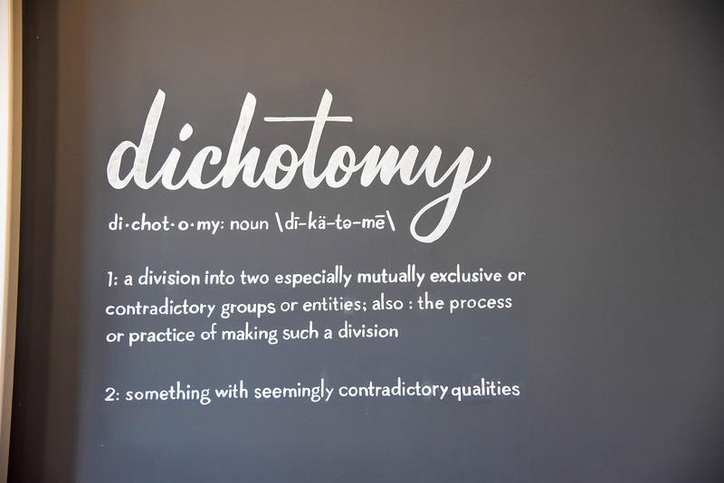dichotomy definition