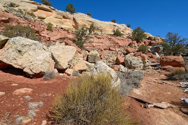 C est un canyon dont les cotés recèlent plein de ruines anasazi