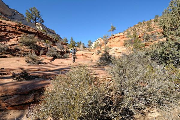 Le plan initial était de faire un canyon, mais c'était trop à l'ombre, donc froid et gelé , nous nous  orientons donc vers Many Pools, une randonnée déjà effectuée un juin, qui nous avait beaucoup plu, sur le haut de Zion