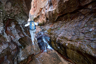 2014 23 mars Water Canyon + Gooseberry Mesa