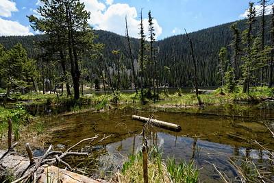 2016-06-28 Fern lake