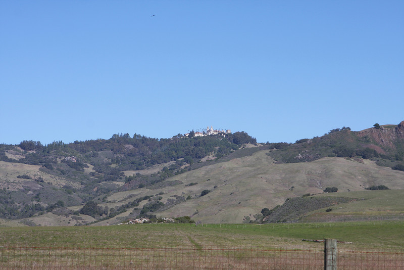 2011-02-12_077