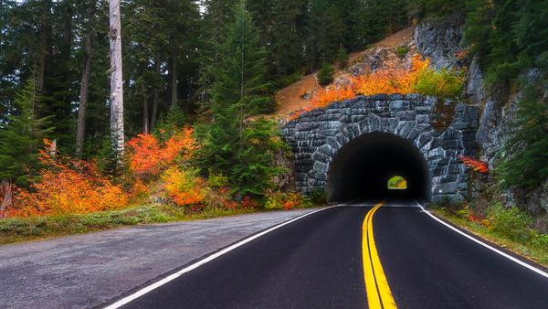 Fall Tunnel