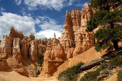 USA: Utah - Bryce National Park