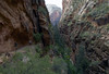 Trail to Scout's Lookout 2, Zion National Park, Utah, 6 September 2006