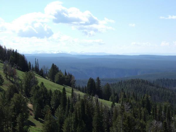 Nous  prenons la route jusqu'à Duraven pass parking, via Canyon village, et attaquons cette magnifique randonnée ... Il fait frais, mais nous sommes en altitude, et à Yellowstone, le climat est très versatile!