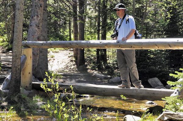 On traverse souvent des petits affluents de Glacier Creek