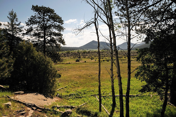 Là où il y avait tant d'elks avant hier
