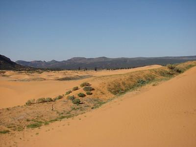 vue de Coral Pink Sand dunes (3)
