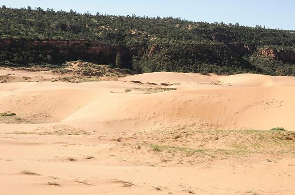 vue de Coral Pink Sand dunes (2)