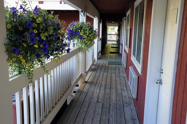 A Jackson Hole, il y a des jardinières de fleurs suspendues partout. Là, devant notre chambre