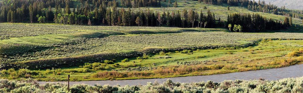 Panorama de la Lamar River