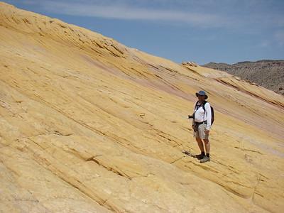 2009 13 Yellow Rock