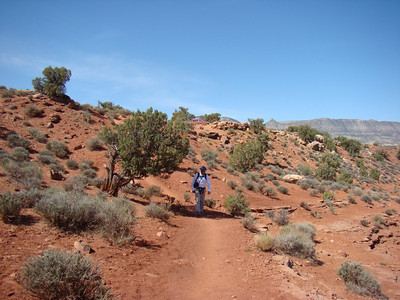 Comme toujours dans les canyons, il faut commencer par descendre
