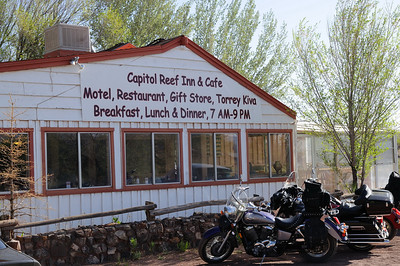 Capitol Reef Inn & Cafe                              360 West Main St., Torrey, Utah 84775 (435-425-3271)  cri@capitolreefinn.com At the Capitol Reef Inn & Cafe, we hope you will appreciate our personal style, where each customer's needs and satisfactions are important. Enjoy our quiet, clean and natural atmosphere. It's an old-fashioned Western place with a children's playground, a large grassy yard surrounded by many large elm trees, a desert garden with native plants, a waterfall, interesting collections of local rocks, and a stone kiva. A desert oasis. The Capitol Reef Cafe is a special treat--fresh, natural and local foods deliciously cooked to your satisfaction. Healthy meals--lots of fresh vegetables, local fresh trout, brown rice, whole-wheat rolls, no additives, no preservatives, low in fat and sugar. Open 7am-9pm for breakfast, lunch and dinner.