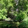 Cette balade le long du ruisseau  est splendide, reposante et fort sympathique