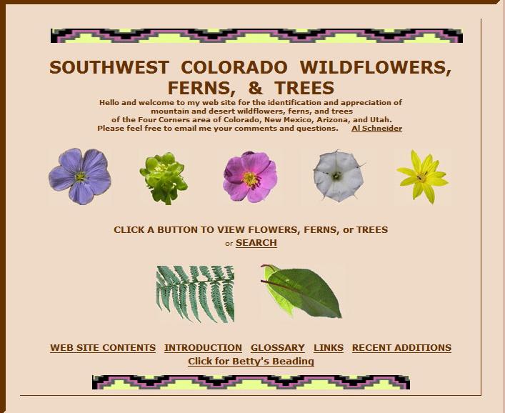 """Il faut pouvoir donner un nom aux fleurs...dur dur!! <a href=""""http://www.swcoloradowildflowers.com/index.htm#top"""">http://www.swcoloradowildflowers.com/index.htm#top</a> ou<br /> Flore de l'Ouest américain en mai (26 mars 2008)  par  Kashtin, voyageforum"""