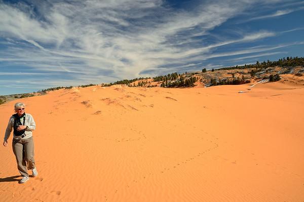 Puisque nous ne randonnons pas aujourd'hui, nous faisons un détour au dessus de Kanab par Coral Pink Sand dunes. On y était allé en 2008, mais j'avais été malade, et pas vu grand chose...