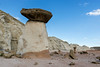Two-color-toadstool,-Paria-Rimrocks,-Grand-Staircase-Escalante-National-Monument,-Utah