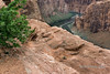 Glen Canyon and the Colorado in the spring