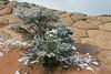 White Pocket, Vermillion Cliffs NM, Arizona