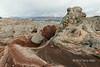 White pocket and the high desert with fresh snow, Vermillion Cliffs National Monument, Arizona