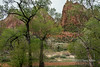 Spring colours at the Court of the Patriarchs, Zion National Park, Utah