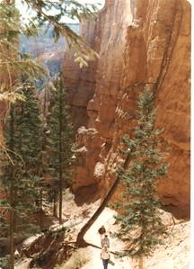 78 - Trail - 1