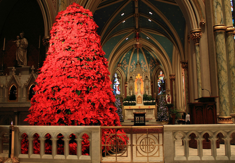 The Blessed Sacrament tabernacle at Christmas time in the Cathedral of St. John the Baptist Catholic Church in Savannah, GA.