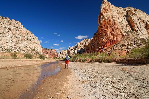 Il faut remonter la Paria River, en fait on va la traverser 5 fois!