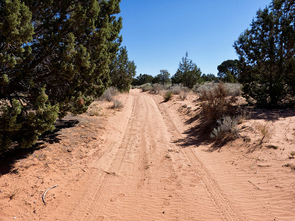 """Paw Hole, le sable nous semble bien """"mou"""", on s'arrete à 800m du parking final"""