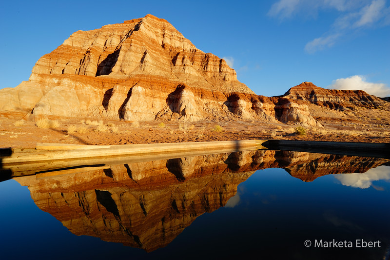 Reflections in a cattle trough, Paria Valley