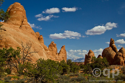 RED ROCKS AT ARCHES