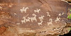 Ute Petroglyphs at Wolfe Ranch