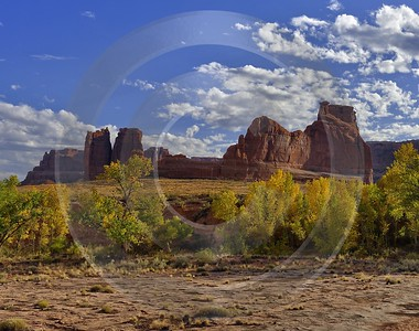 Moab Arches National Park Tree Curthouse Towers Utah Fine Art Photos Stock Image Art Prints Ice - 012516 - 11-10-2012 - 7360x5804 Pixel